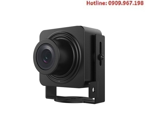 Camera Hikvision IP ngụy trang DS-2CD2D14WD